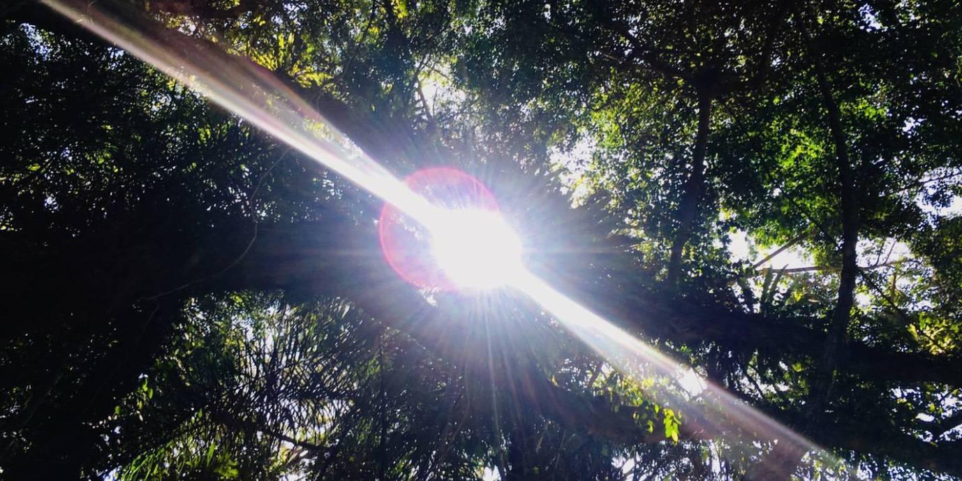 紫外線の基礎知識ー日光浴も大切なのです!ー | mOrganics